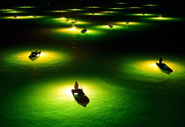 Ngư dân rọi đèn đánh bắt lươn trơn (hay còn gọi là lươn thủy tinh) trên sông Yoshino, Nhật Bản