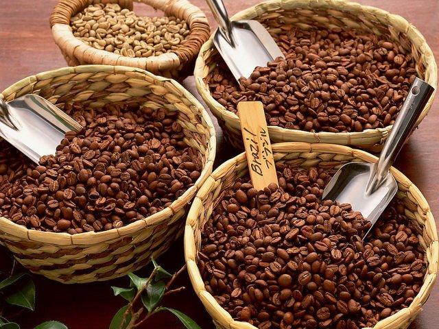 robusta-bean-3